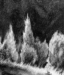 Bäume Malen Kunstschule