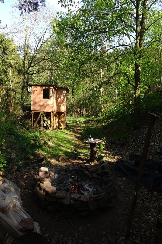 Wald Harz Kunstschule
