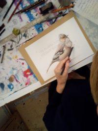 Vogel Zeichnen Malschule